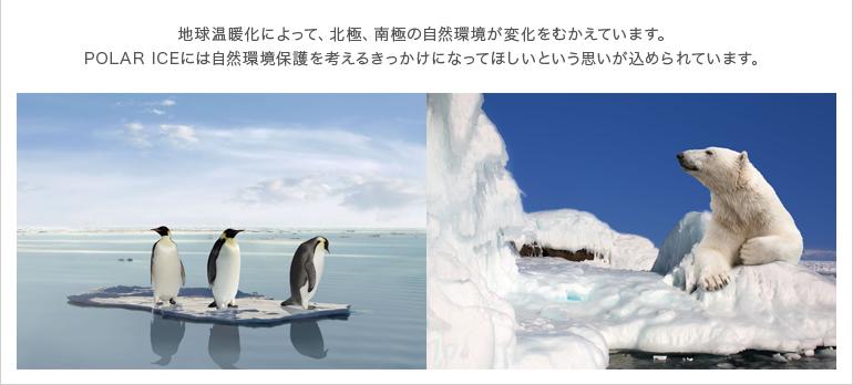 地球温暖化によって、北極、南極の自然環境が変化をむかえています。POLAR ICEには自然環境保護を考えるきっかけになってほしいという思いが込められています。