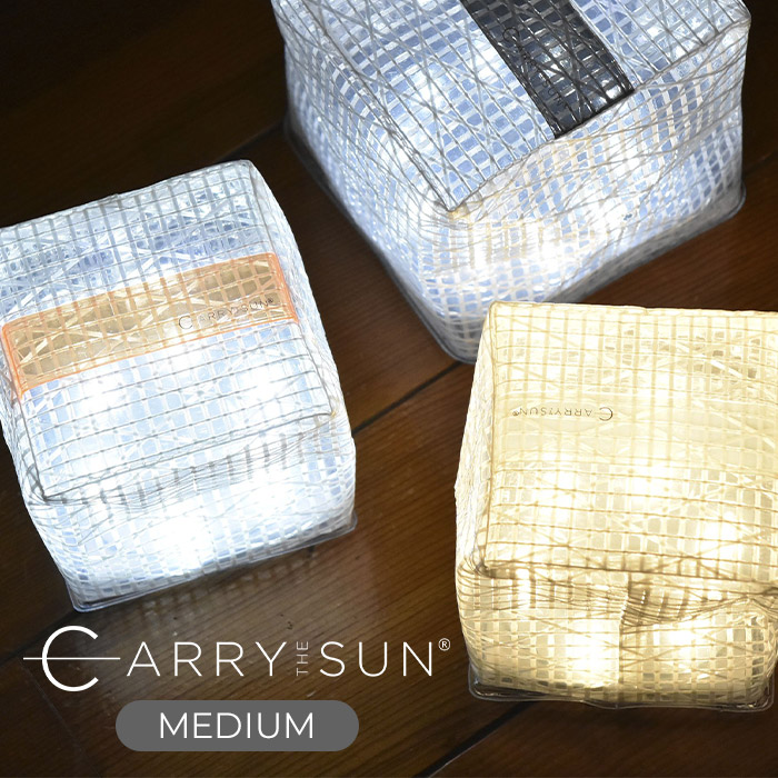 CARRY THE SUN (MEDIUM)